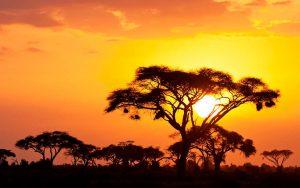 moverser por Kenia