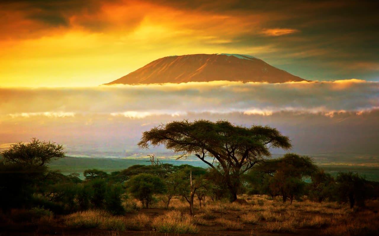 safari vestir Kenia